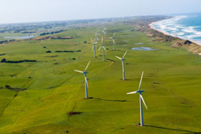 Port Fairy Wind Farms